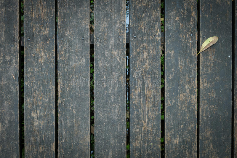 Old wooden walkway with falling leaves in the morning of autumn royalty free stock photo