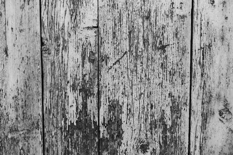 Old wooden wall as background or wallpaper. Black and white image stock photo
