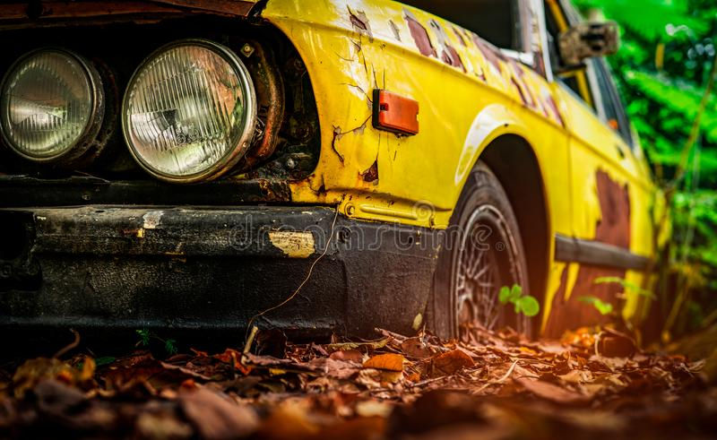 Old wrecked car in vintage style. Abandoned rusty yellow car in the forest. Closeup front view headlights of rusty wrecked abandon royalty free stock images