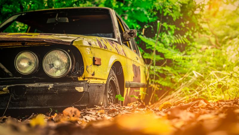 Old wrecked car in vintage style. Abandoned rusty yellow car in the forest. Front view headlights of rusty wrecked abandoned car stock photos