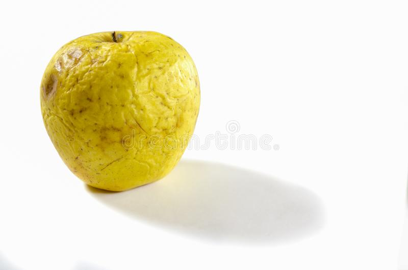 An old wrinkled apple lying on a white background stock photos