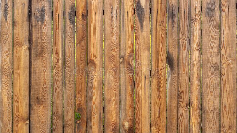 Old Yellow pine wood texture. Floor surface background stock photos