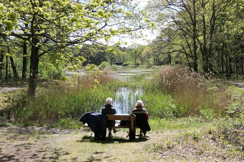 Older couple on a bench royalty free stock photography