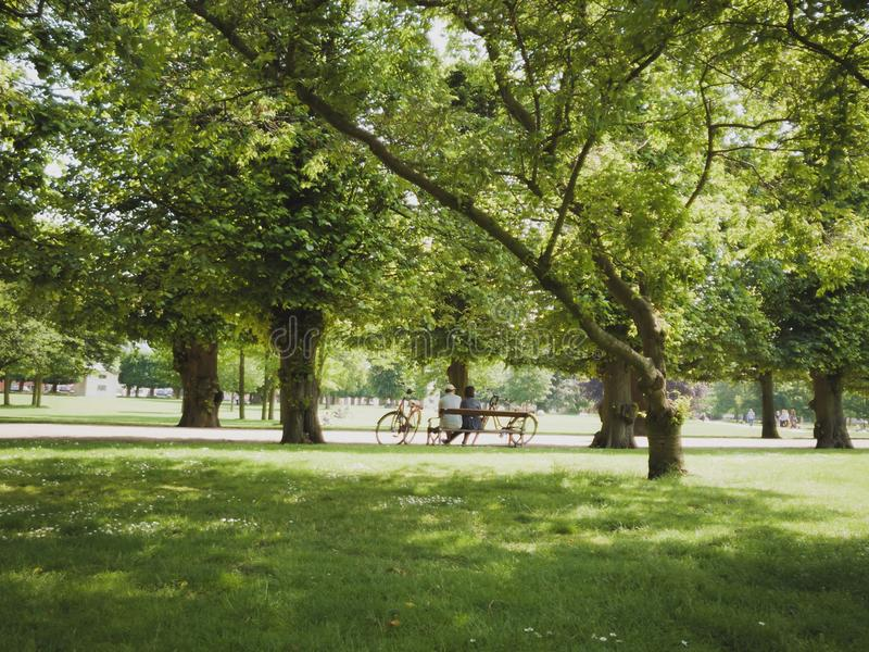 Older couple sitting in park on bench with bicycles Copenhagen city Denmark stock image