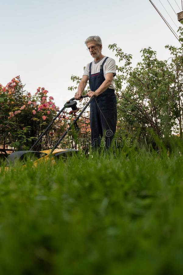 Older man mowing the lawn stock photography