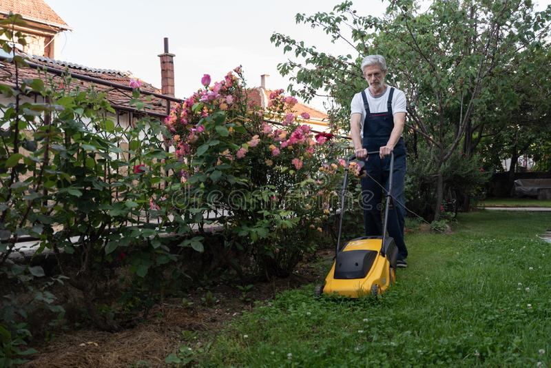 Older man mowing the lawn stock images