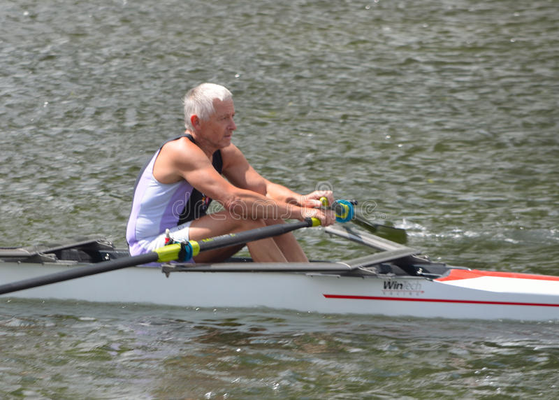 Older man in sculling competition royalty free stock photos