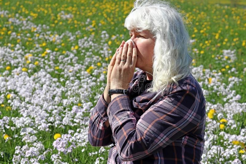 An older woman has hay fever. Hay fever begins in spring. A woman sneezes in a meadow royalty free stock images