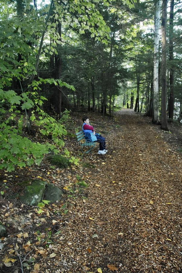 Older woman sitting on a bench alongside a wooded path stock photography