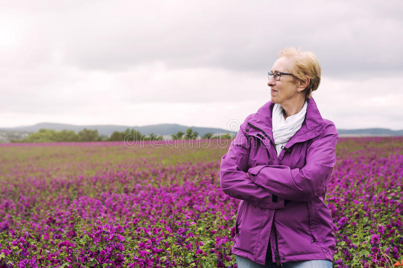 Older woman standing at field of purple flowers and enjoying the stock image