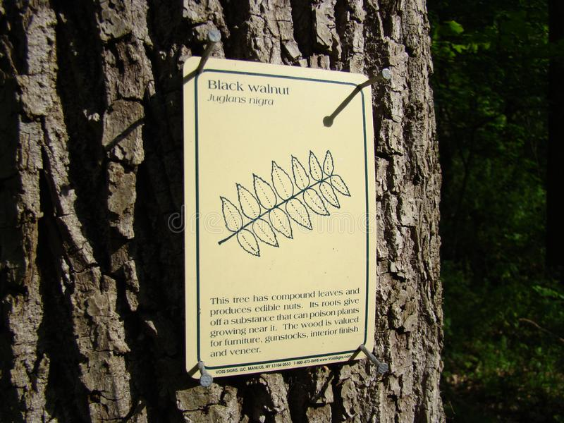 Oldtown Creek Preserve stock image
