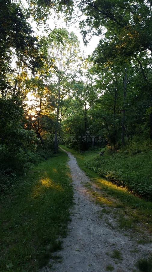 Oldtown Creek Preserve royalty free stock photo