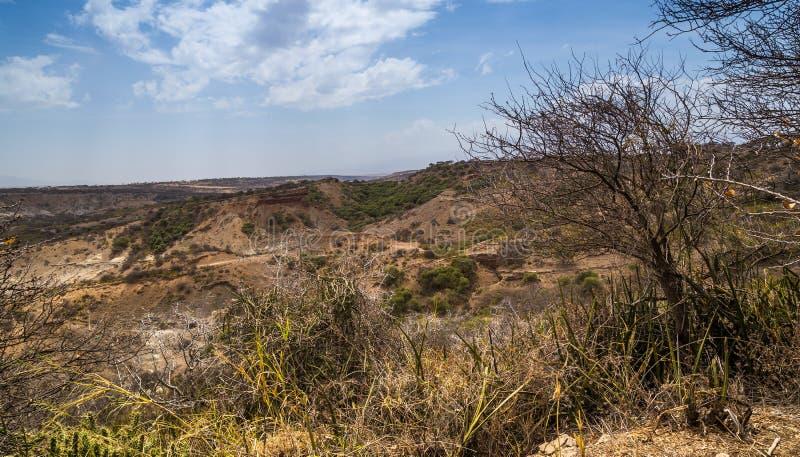 Olduvai в Танзании стоковые изображения rf