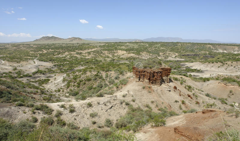 Olduvai Gorge in Africa. Olduvai Gorge in Tanzania, the cradle of man stock photography