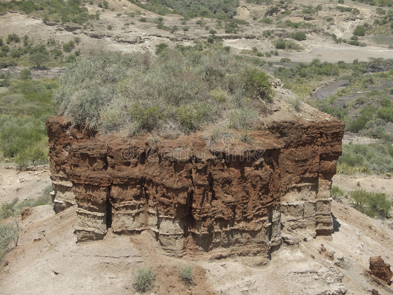 Olduvai Gorge detail. Detail of the Olduvai Gorge in Tanzania (Africa), the cradle of man royalty free stock images