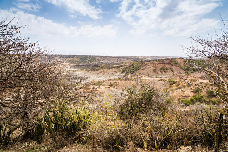 Olduvai in Tanzania stock images