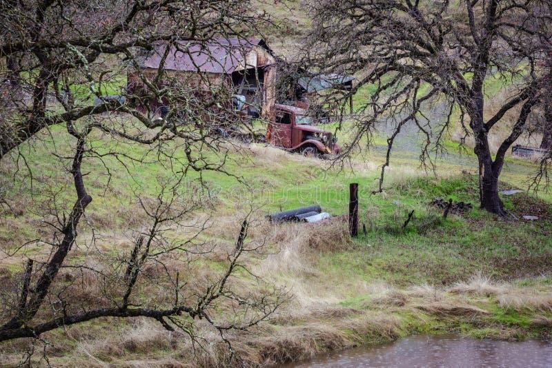 Ole Rust Truck Nestled mellan träden fotografering för bildbyråer