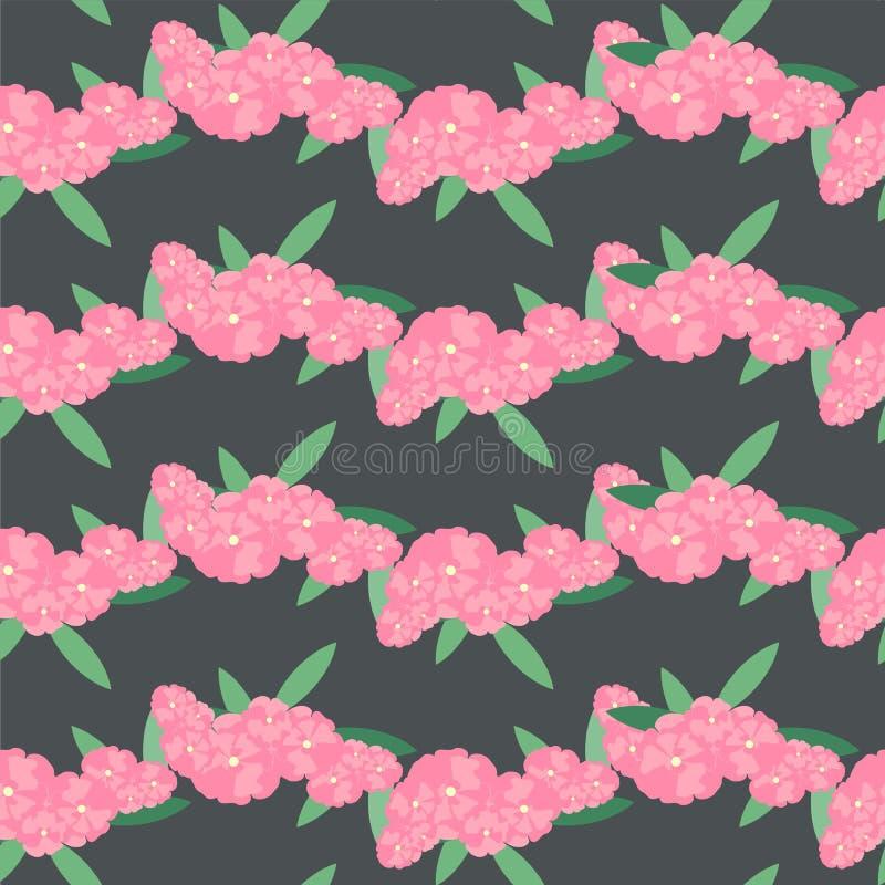 Oleandrowego kwiatu bezszwowy tło Menchie, kwiaty na czerni Projekta elementu zapasu wektoru ilustracja ilustracja wektor