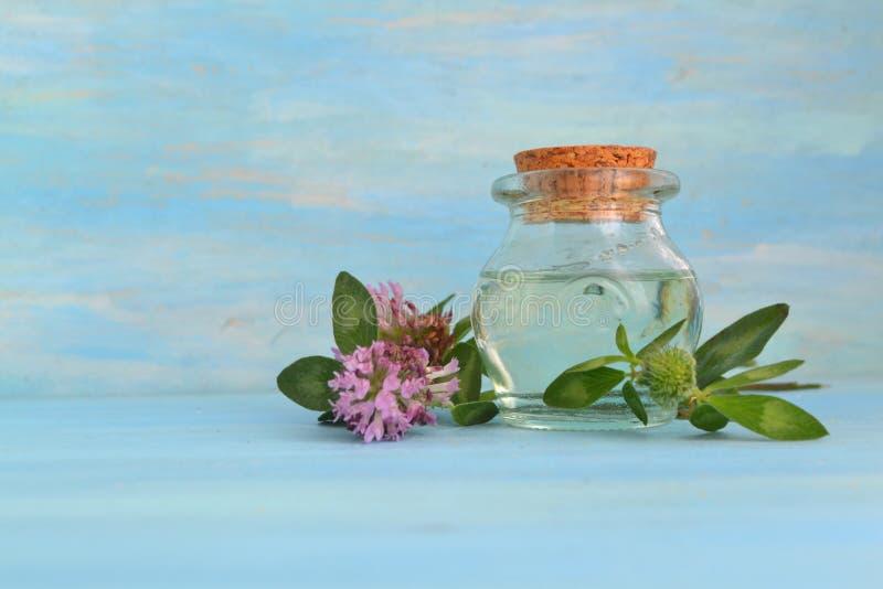 Olej koniczyny zasadniczej i kwiat na niebieskim drewnianym tle z przestrzenią do kopiowania obrazy royalty free