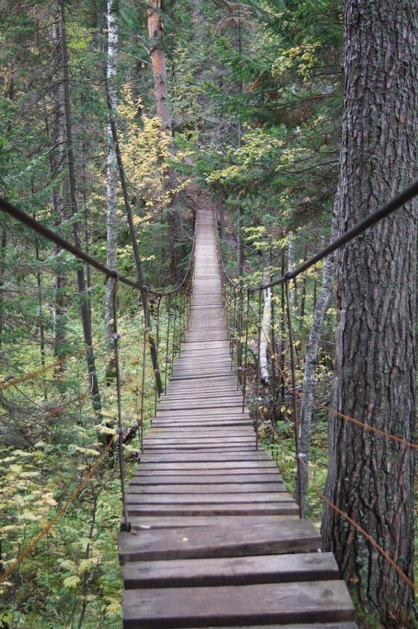 ` Oleni Ruchi ` природного парка Мост стоковые изображения rf