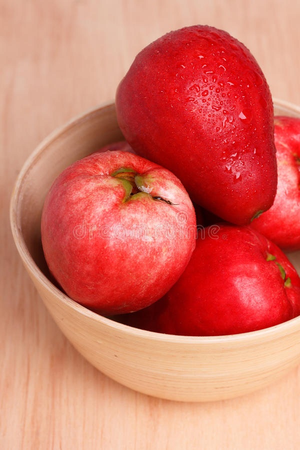 Oleracea d'Acmella de fruit (le jambu, usine de mal de dents, paracress, élisent photo libre de droits