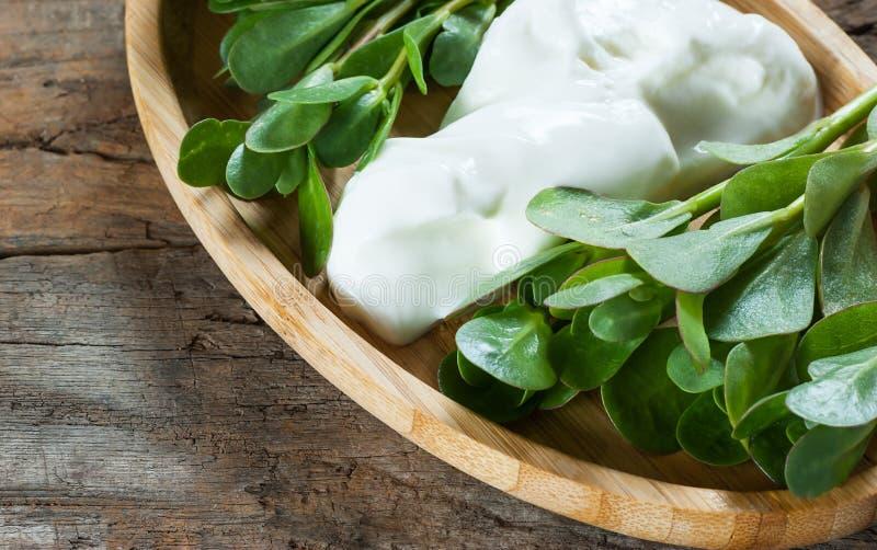 Oleracea fresco de Portulaca do purslane, ervas daninhas comestíveis com iogurte na tabela de madeira imagem de stock