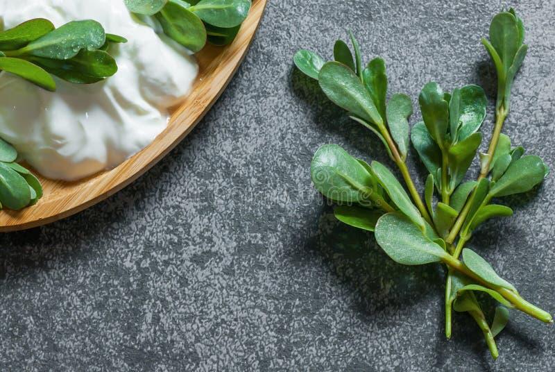 Oleracea fresco de Portulaca do purslane, ervas daninhas comestíveis com iogurte na tabela rústica cinzenta fotografia de stock
