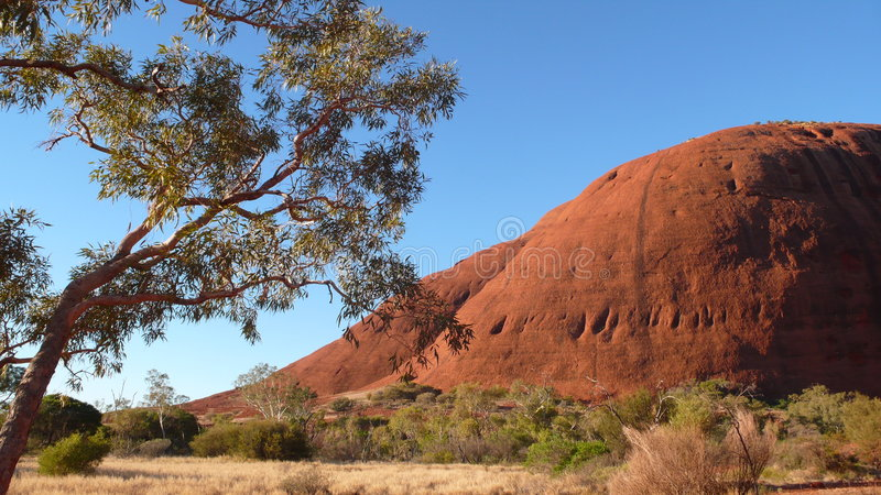 Olgas Red Centre Australia royalty free stock image