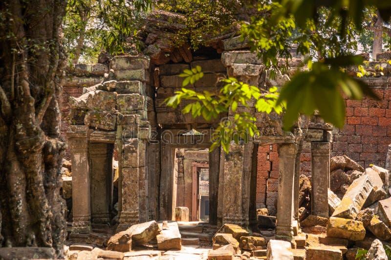 Olhando através das entradas em Ta Prohm, Siem Reap, Camboja fotos de stock royalty free