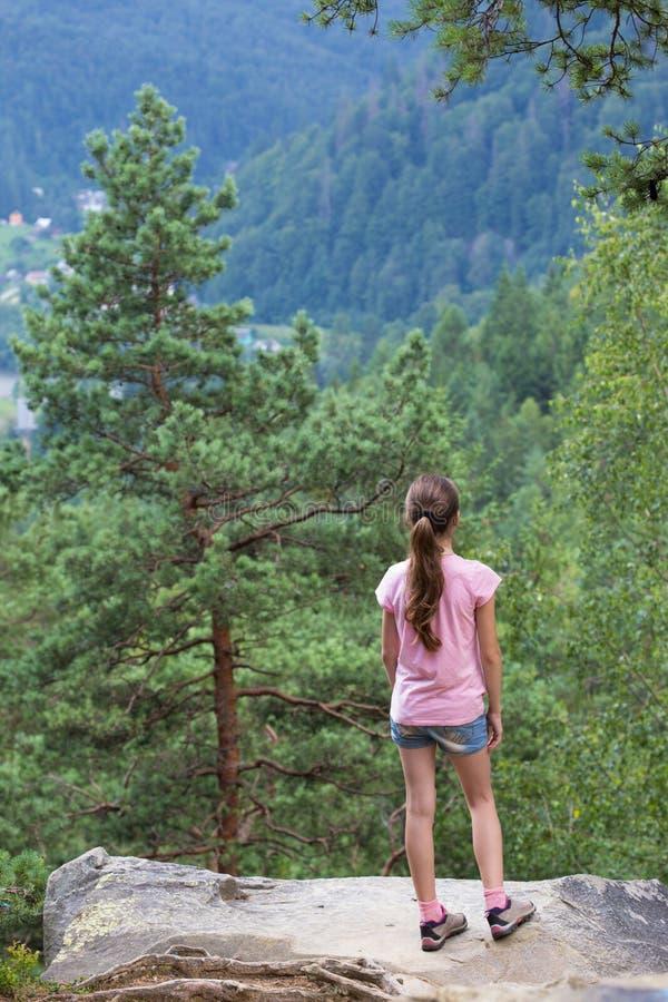 Olhando a floresta das montanhas fotos de stock