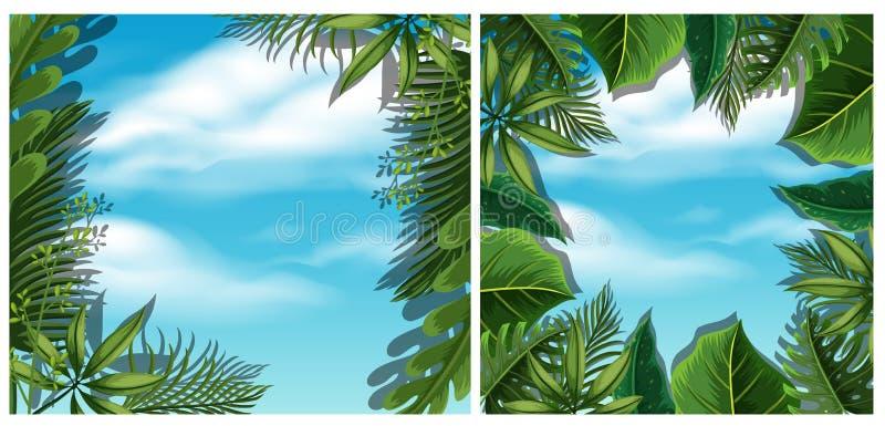 Olhando o céu da vista inferior na floresta ilustração royalty free