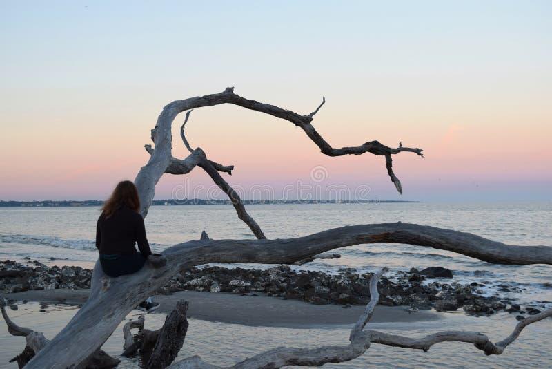 Olhando o nascer do sol, enegreça a praia da rocha imagens de stock royalty free