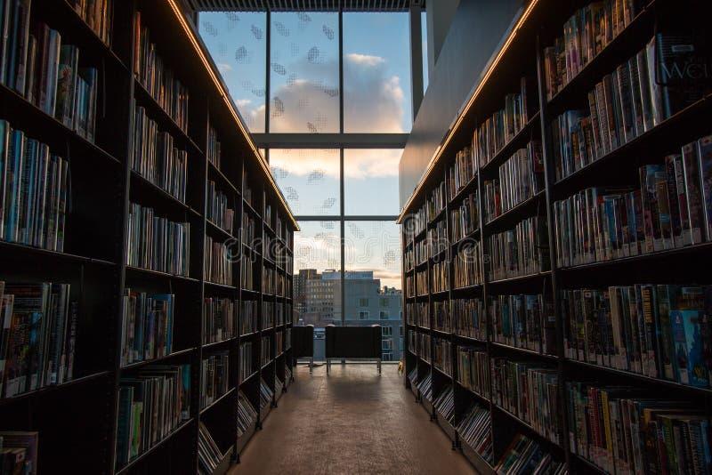 Olhando para fora a janela da biblioteca foto de stock royalty free