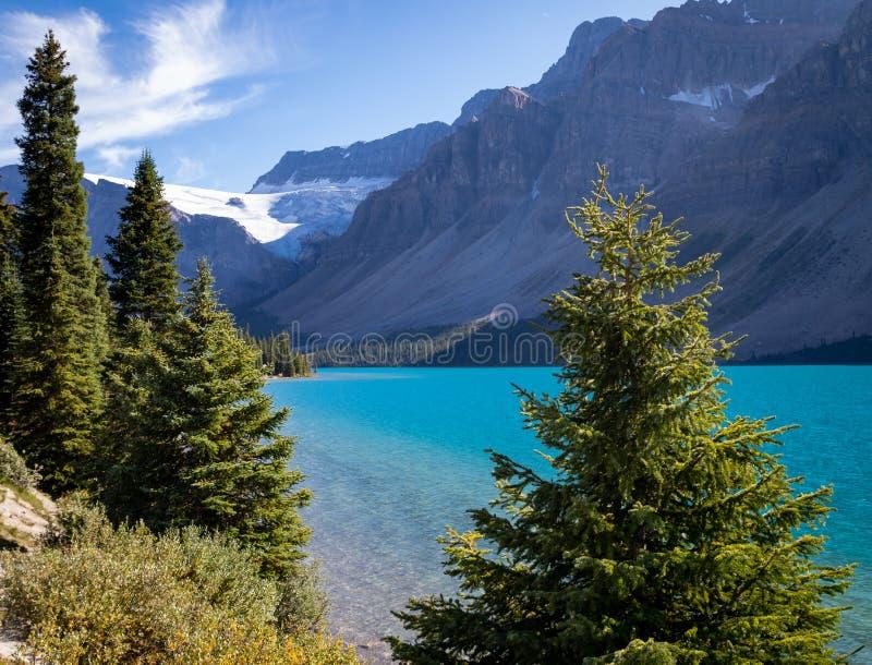 Olhando para o Sul no lago de Bow, o glaciar alimentou o lago nas Rockies canadenses - do Parkway de Icefield, Canadá fotografia de stock