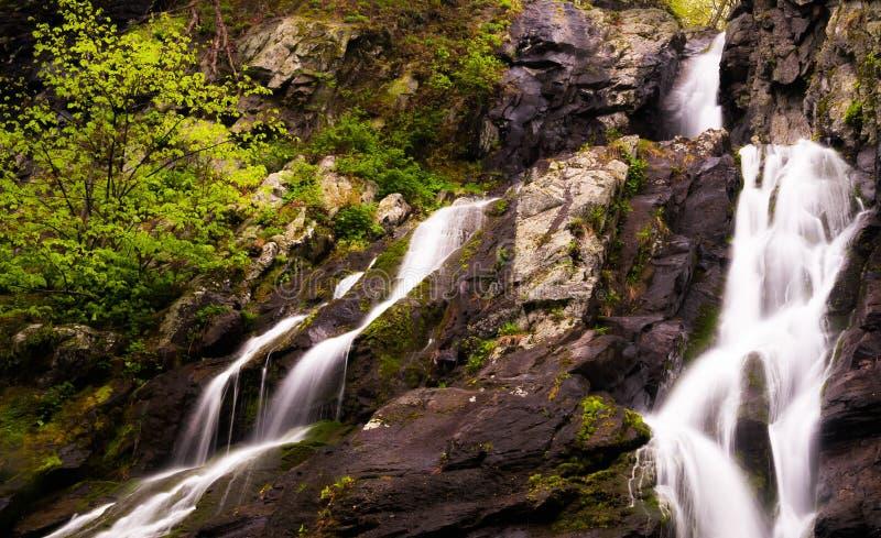 Olhar acima o rio sul cai, parque nacional de Shenandoah, Virgínia fotos de stock royalty free