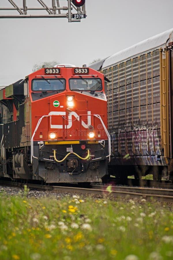 Olhar do close-up em dois trens de mercadorias do CNR que encontram-se nas trilhas foto de stock royalty free