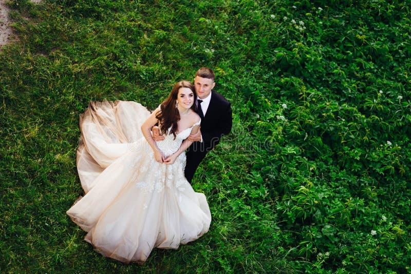 Olhe de cima na posição impressionante dos pares do casamento imagens de stock royalty free