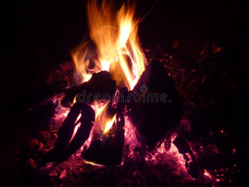 Olhe o fogo com prazer fotografia de stock