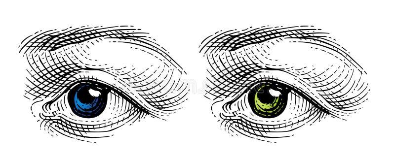 Olho   ilustração stock