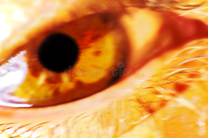 Download Olho imagem de stock. Imagem de vista, macro, povos, cornea - 108237