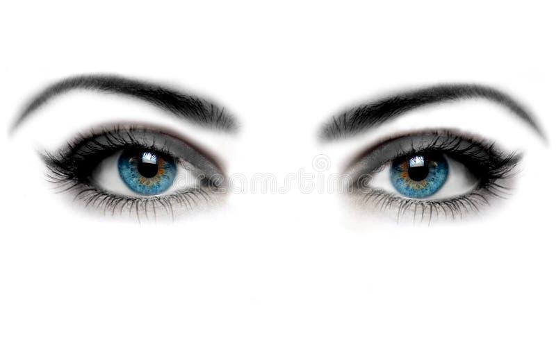 Olho imagem de stock