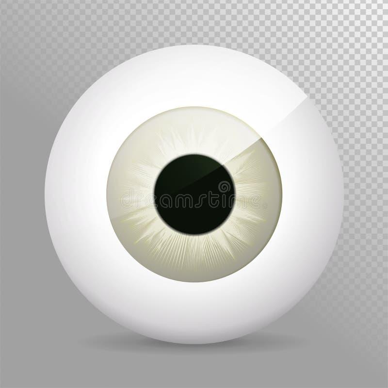 Olho, cinzento Ilustração realística do vetor do grayeyeball 3d Esfera humana real da íris, do aluno e do olho Ícone no fundo tra ilustração stock