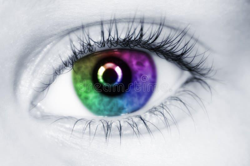 Olho colorido esquerdo do fim da criança acima fotografia de stock