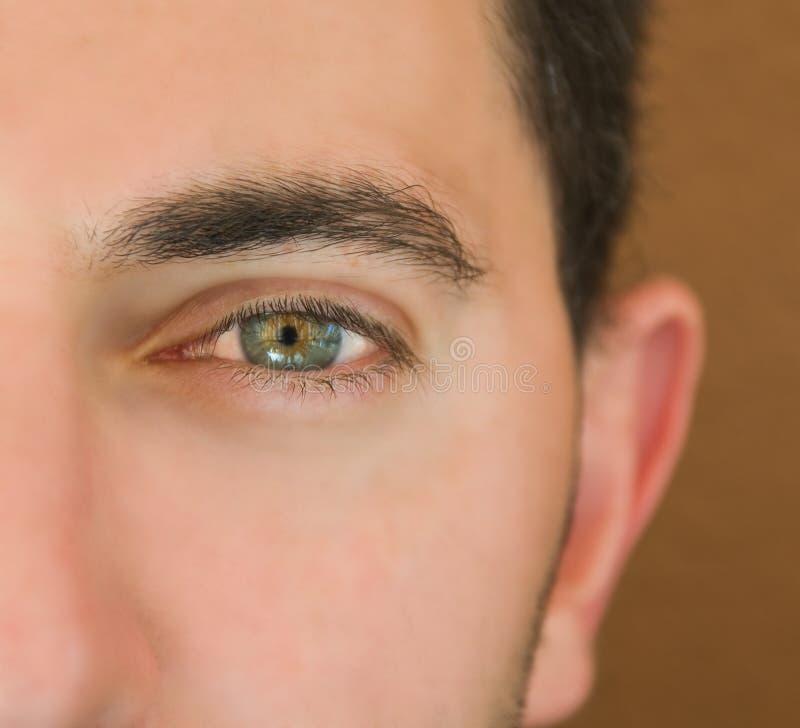 Olho de homem verde. fotos de stock royalty free