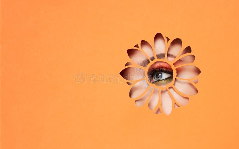 Olho de uma mulher bonita nova com uma composição da beleza fotos de stock
