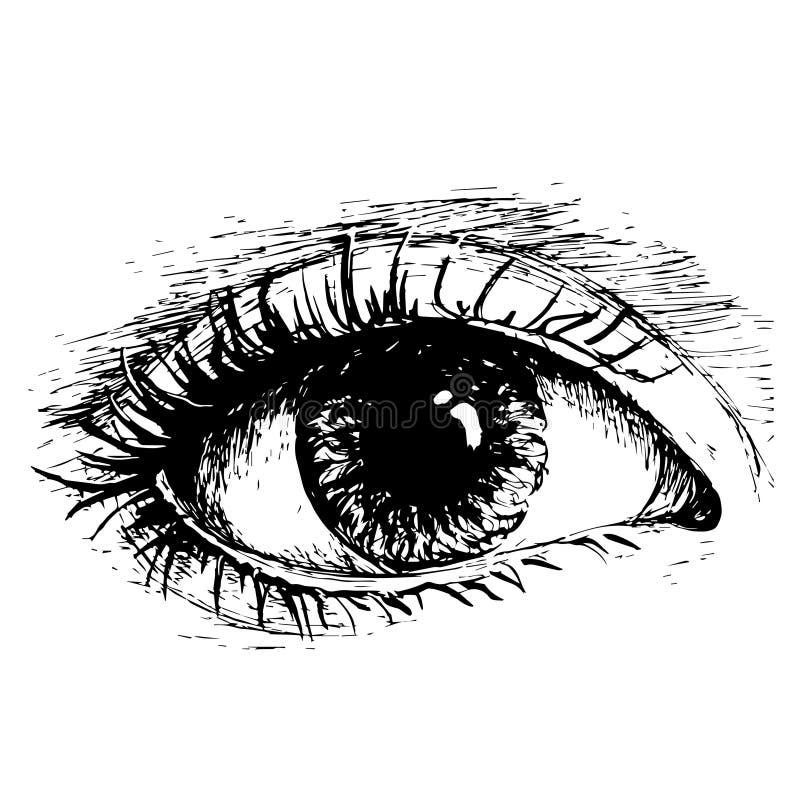 Olho do direito de desenho do esboço do vetor de tinta preta sobre ilustração stock