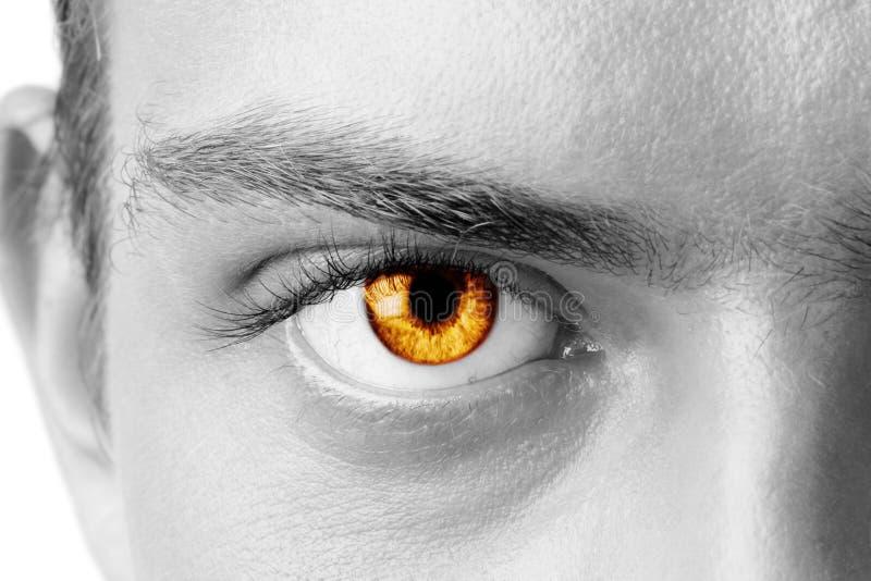 Olho do homem ambarino imagem de stock royalty free