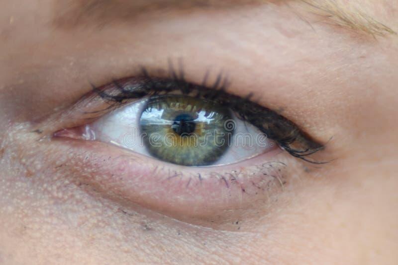 Olho do ` s da mulher fotografia de stock