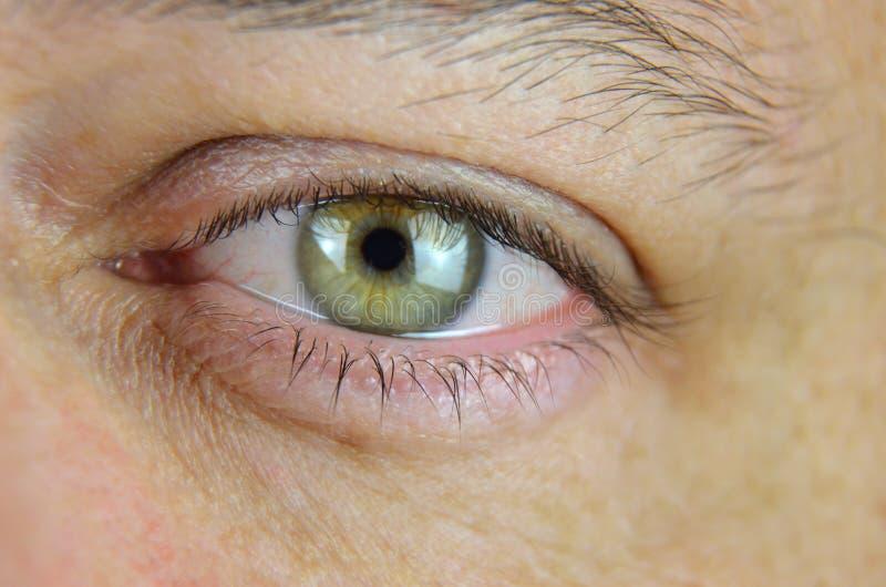 Olho do ` s do homem verde imagem de stock