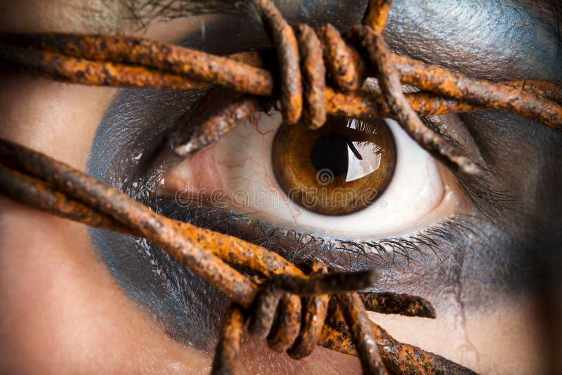 Olho e rasgos. foto de stock royalty free